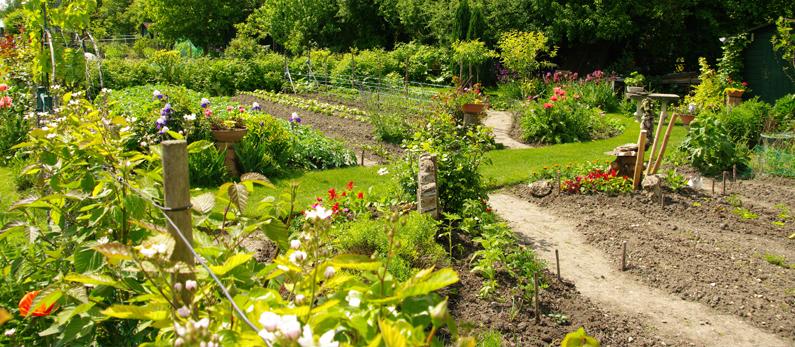 Les jardins familiaux beaumont sur oise for Jardin familiaux