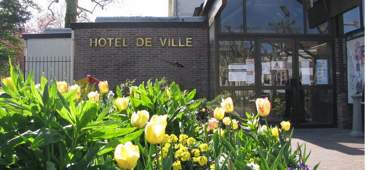 mairie fleurie de tulipes jaunes