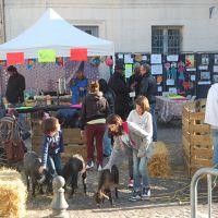 marché des producteurs locaux 2016